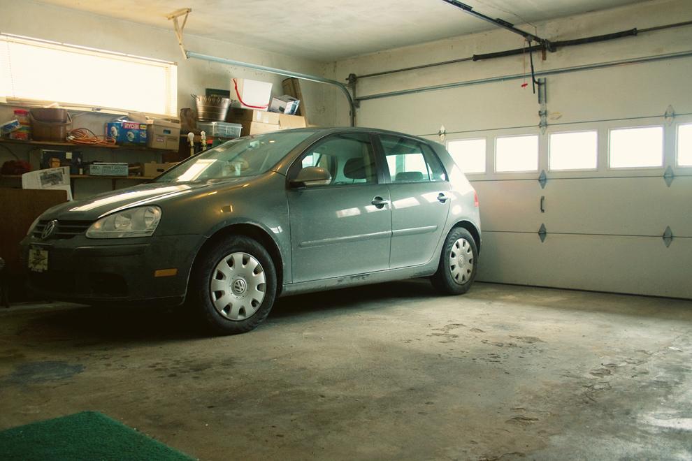 Rabbit in garage
