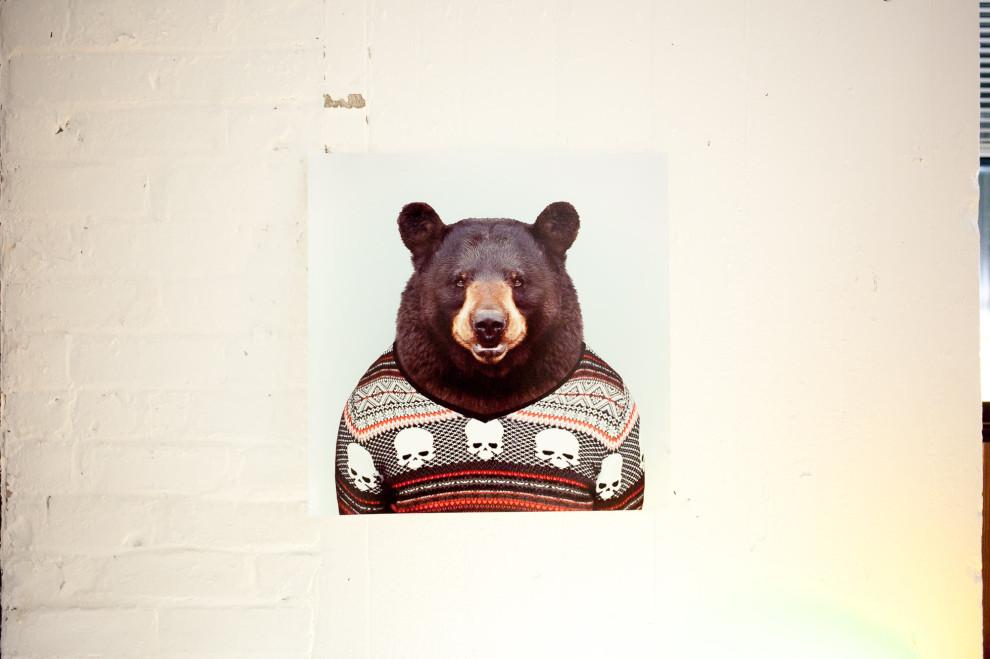 (insert bear in sweater)