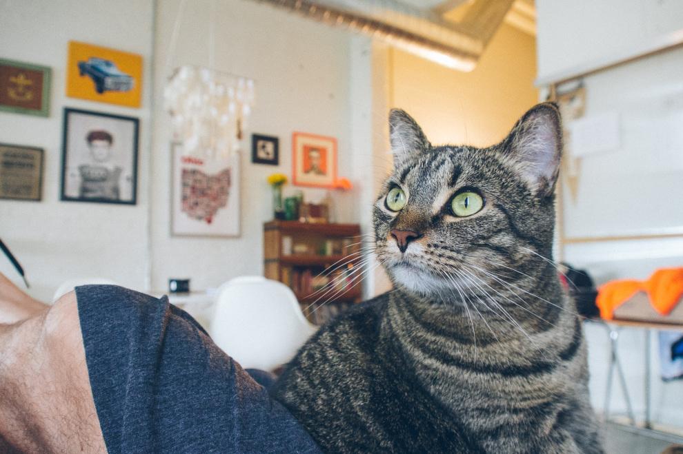 Edie, intensely focused