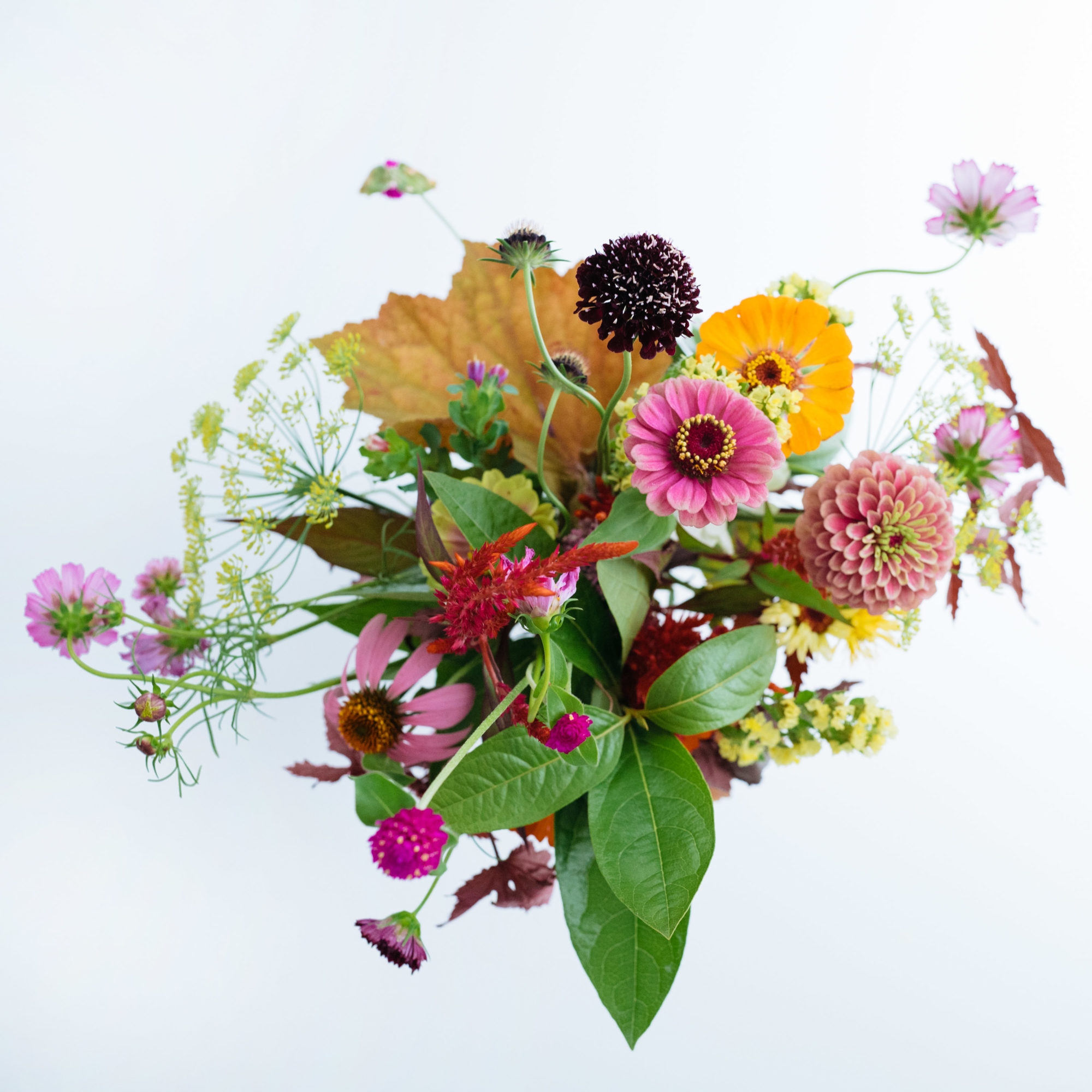 a bouquet of wild flowers, not wildflowers from above on a white background