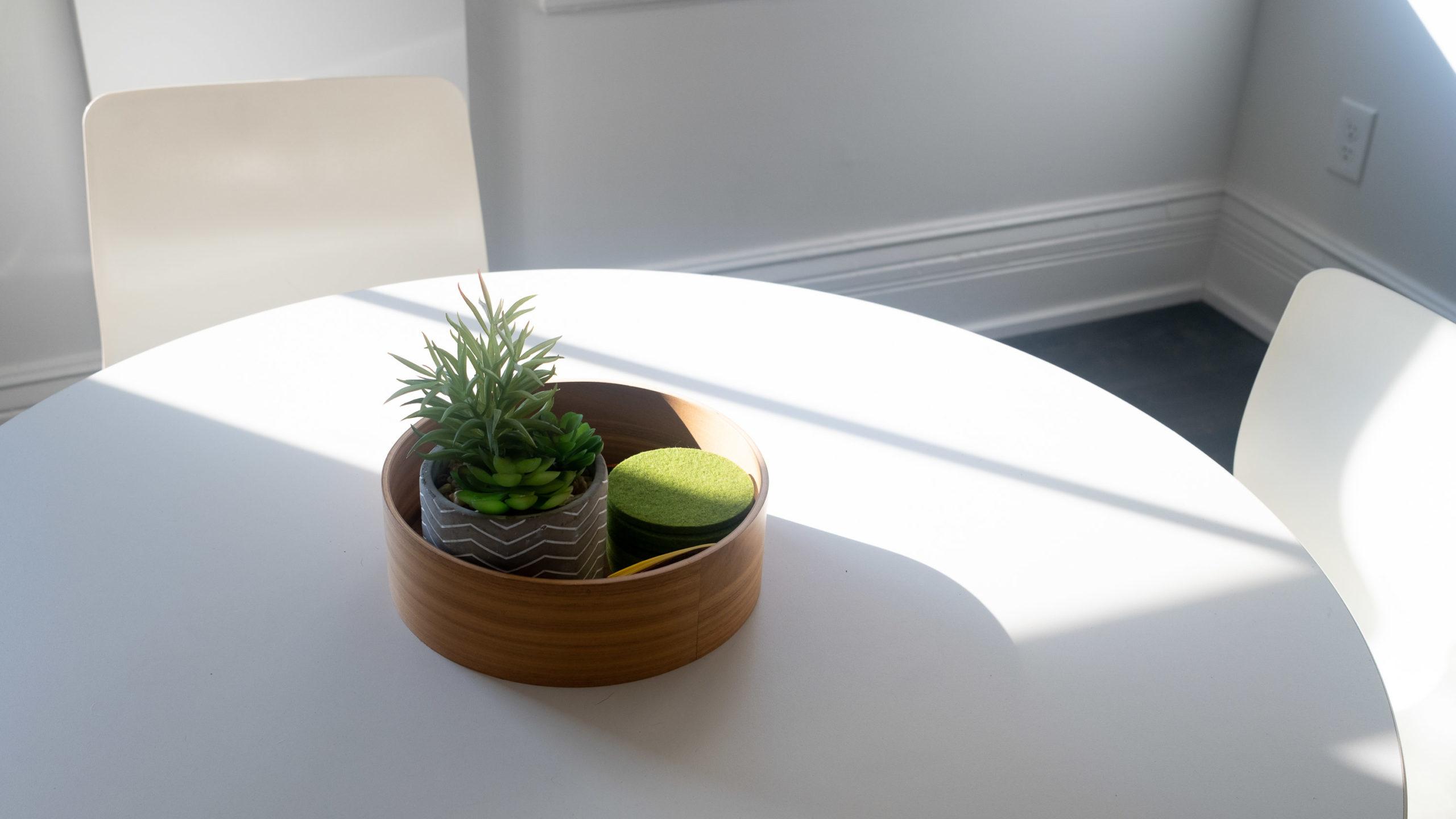 Sunlight across a table