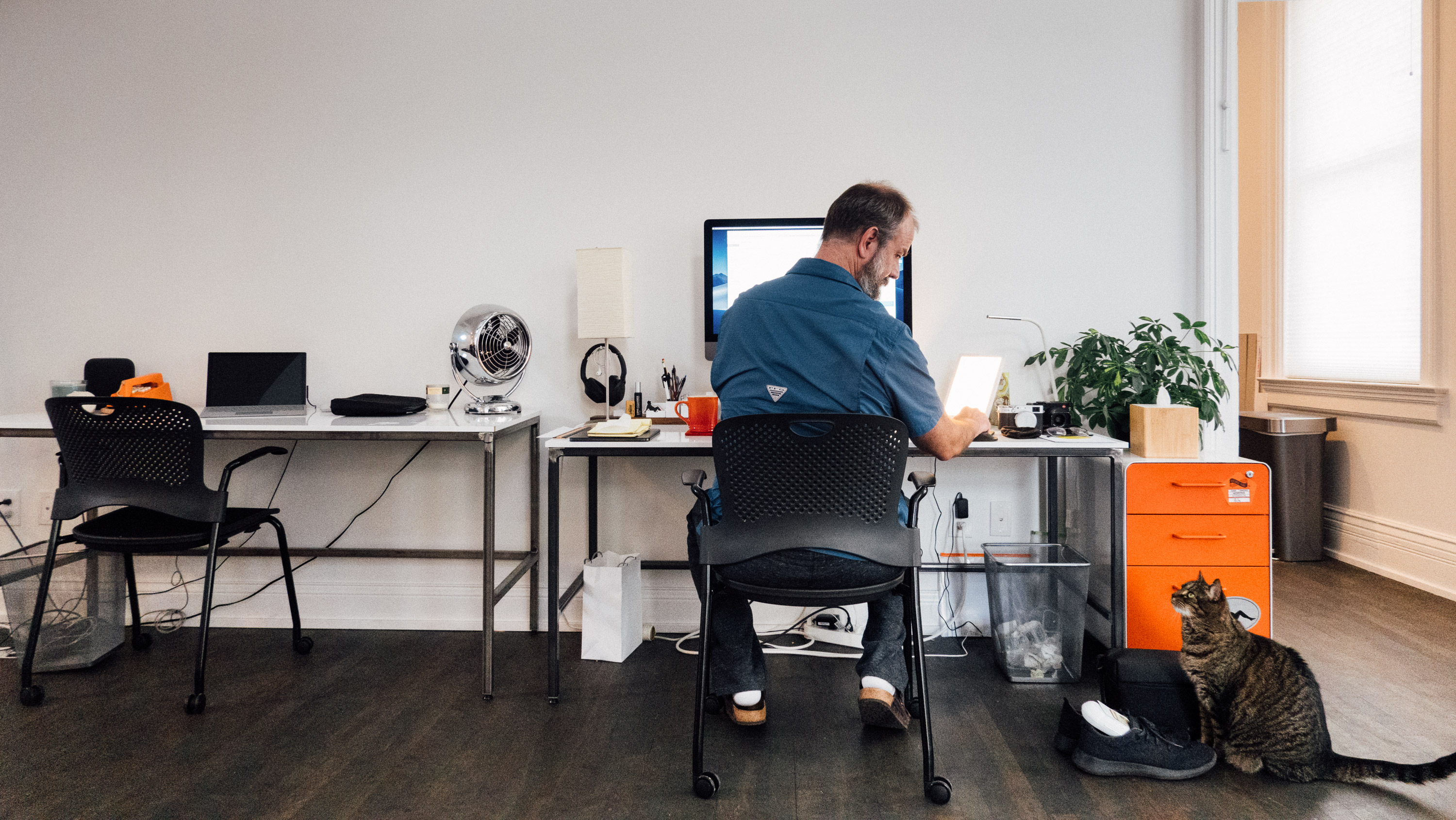 Man with socks and sandals at a desk with computer regards cat