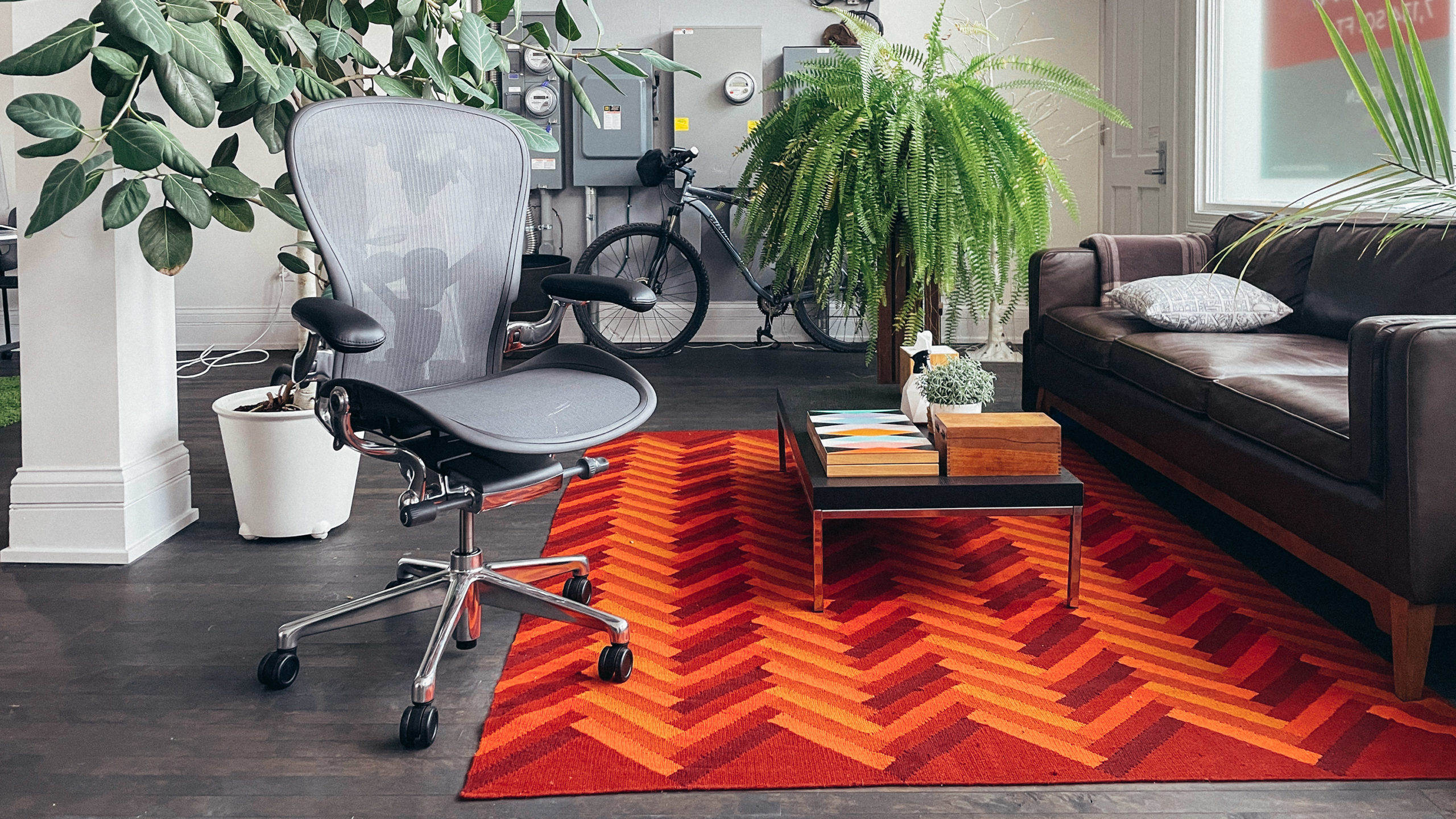 Aeron chair with patterned rug