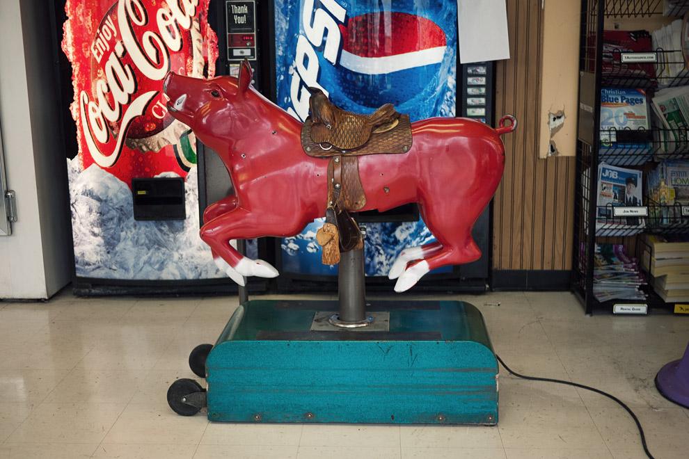 DA pig dog riding machine