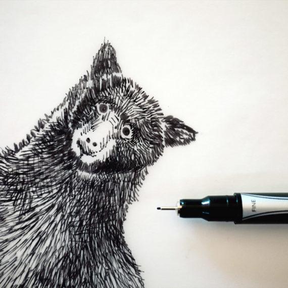 falling bear drawing