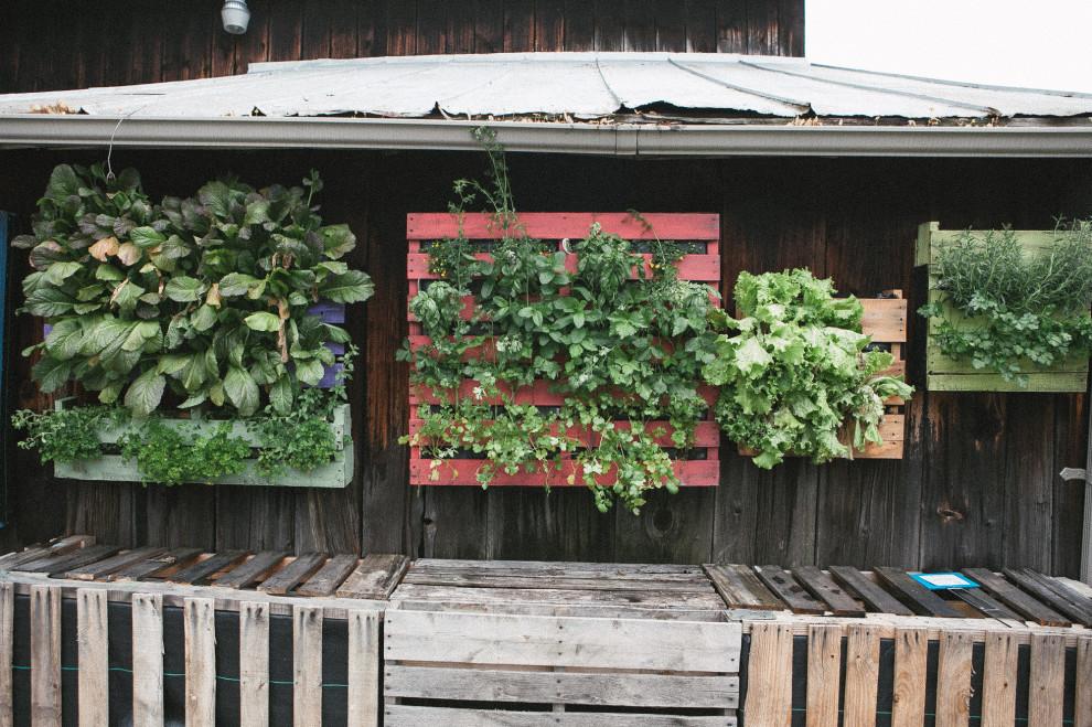 Greenfield Plant Farm