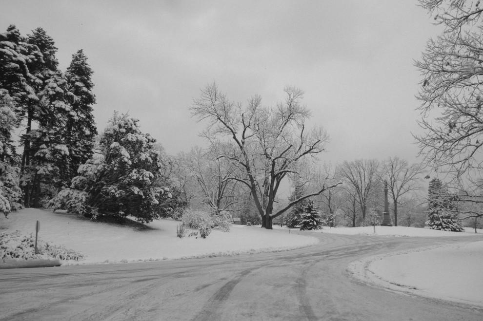 Snowy Spring Grove Cemetery