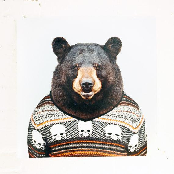 A bear, in a sweater