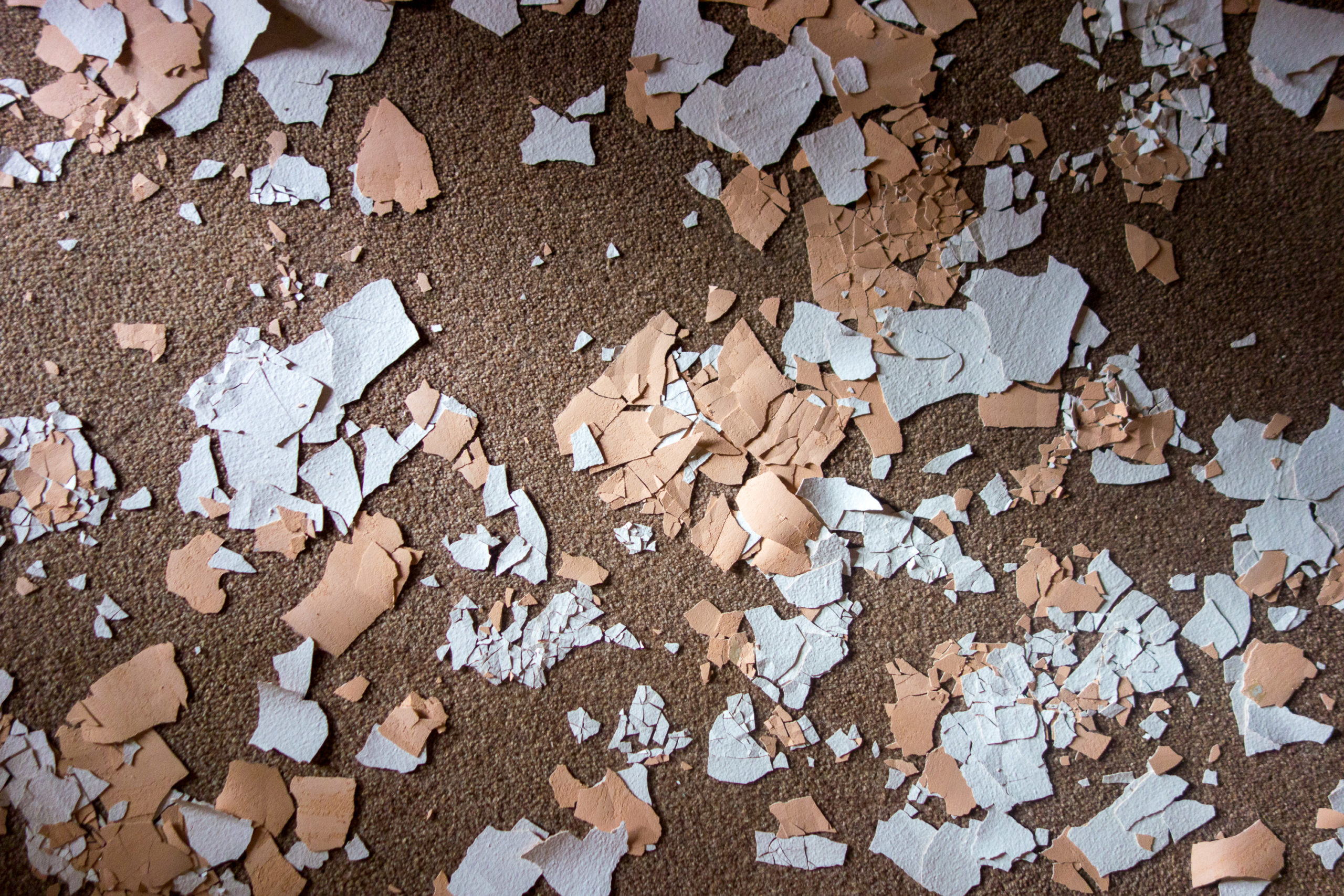 white and tan paint chips on carpet