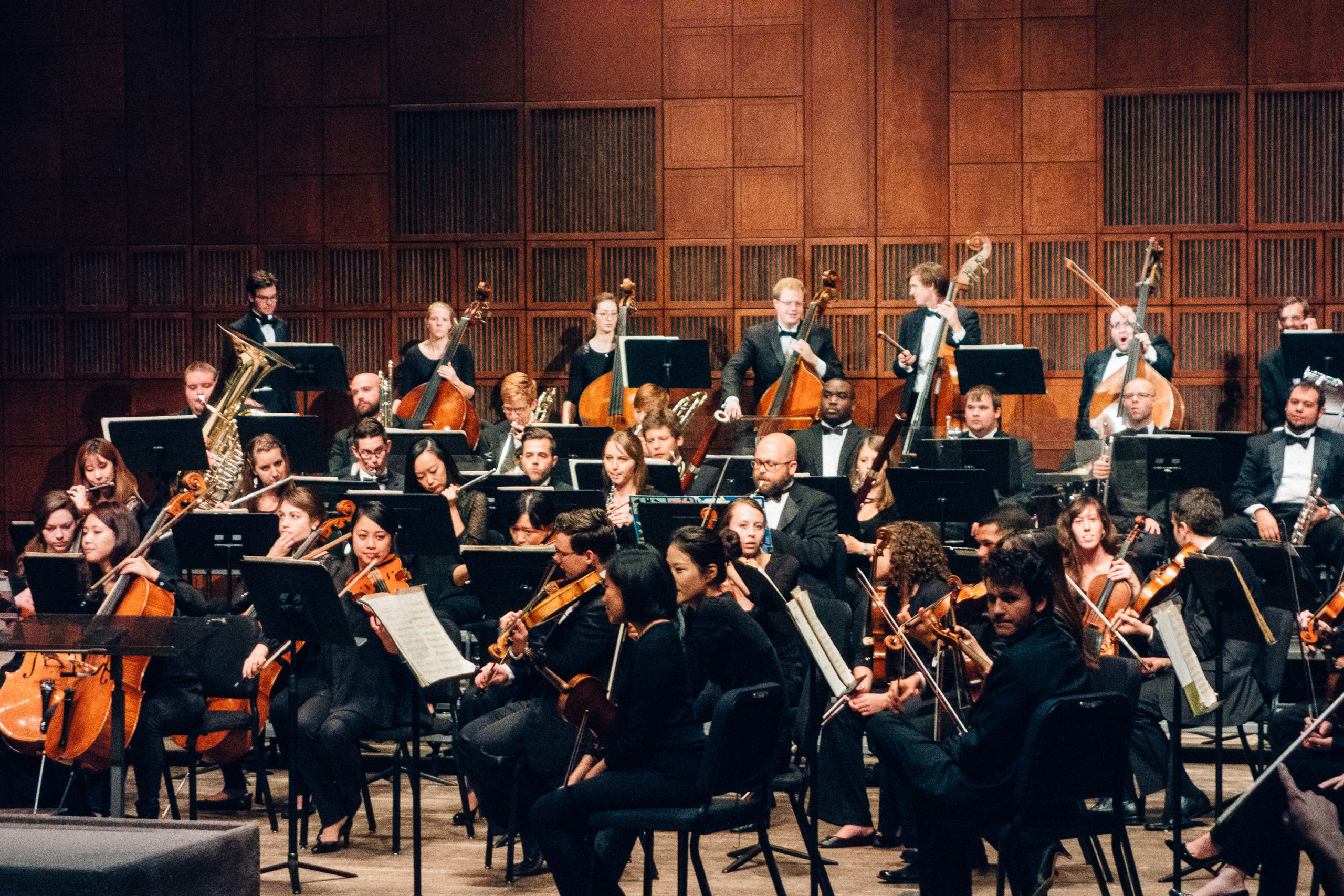 A group of classical musicians in performance