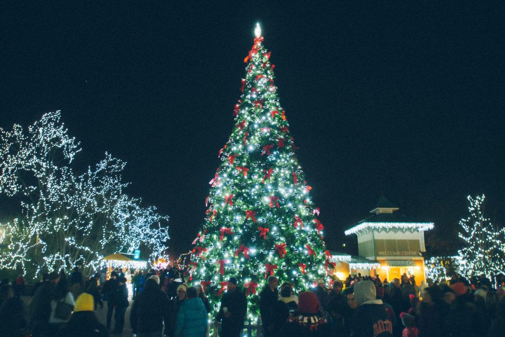 Festival of Lights tree