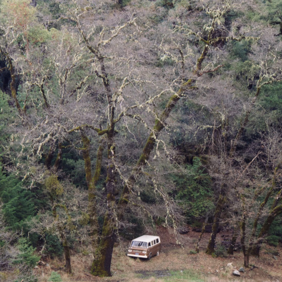 Abandoned van in a wooded area