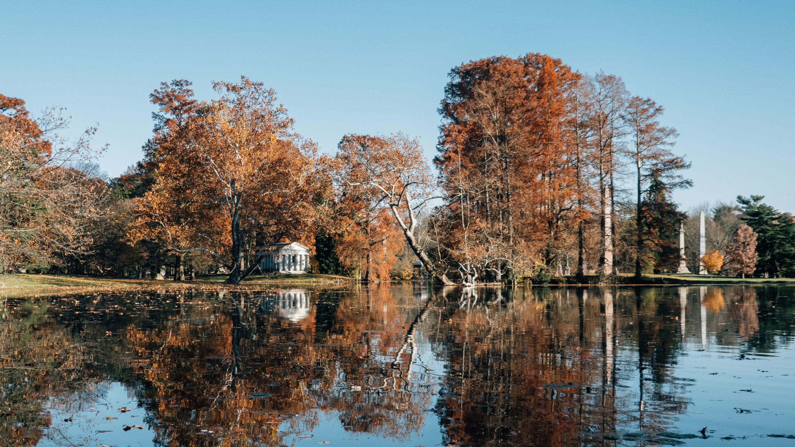 Spring Grove in Autumn