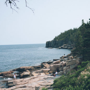 Acadia National Park coast in Mane. The rocky beach arcs to an outcropping of fir trees