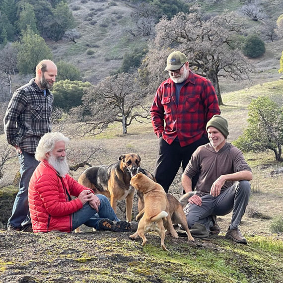 Four old bearded gays on a mountain with some dogs