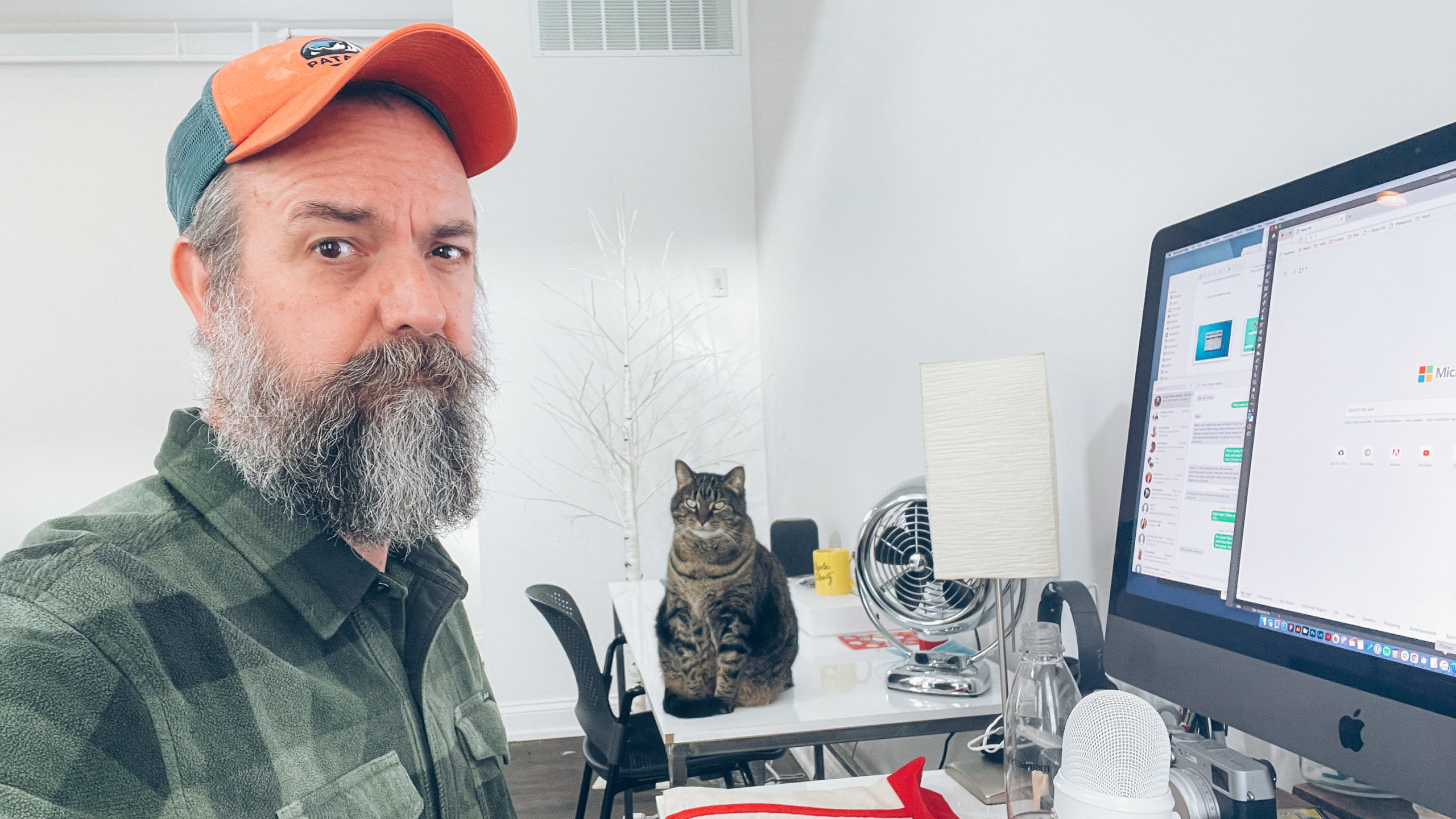 Cat on desk annoyed by aging man with silvering beard