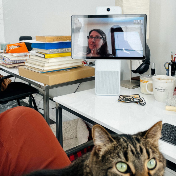 A messy desk, a video conference, a cat