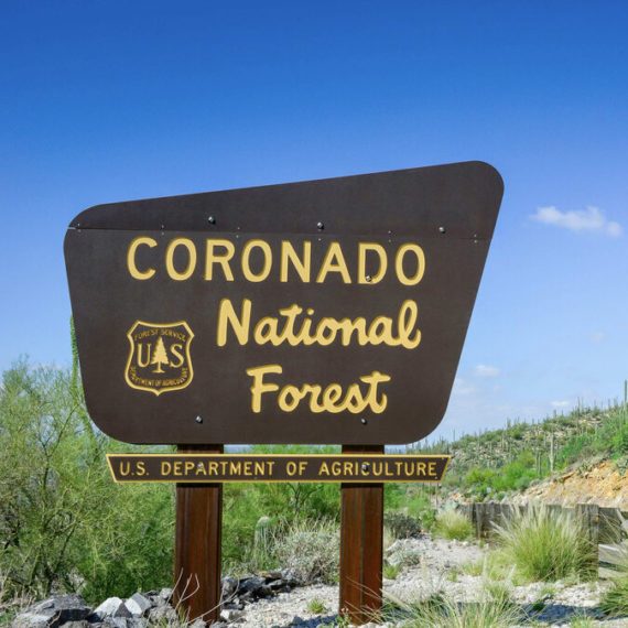 National Park Sign Design