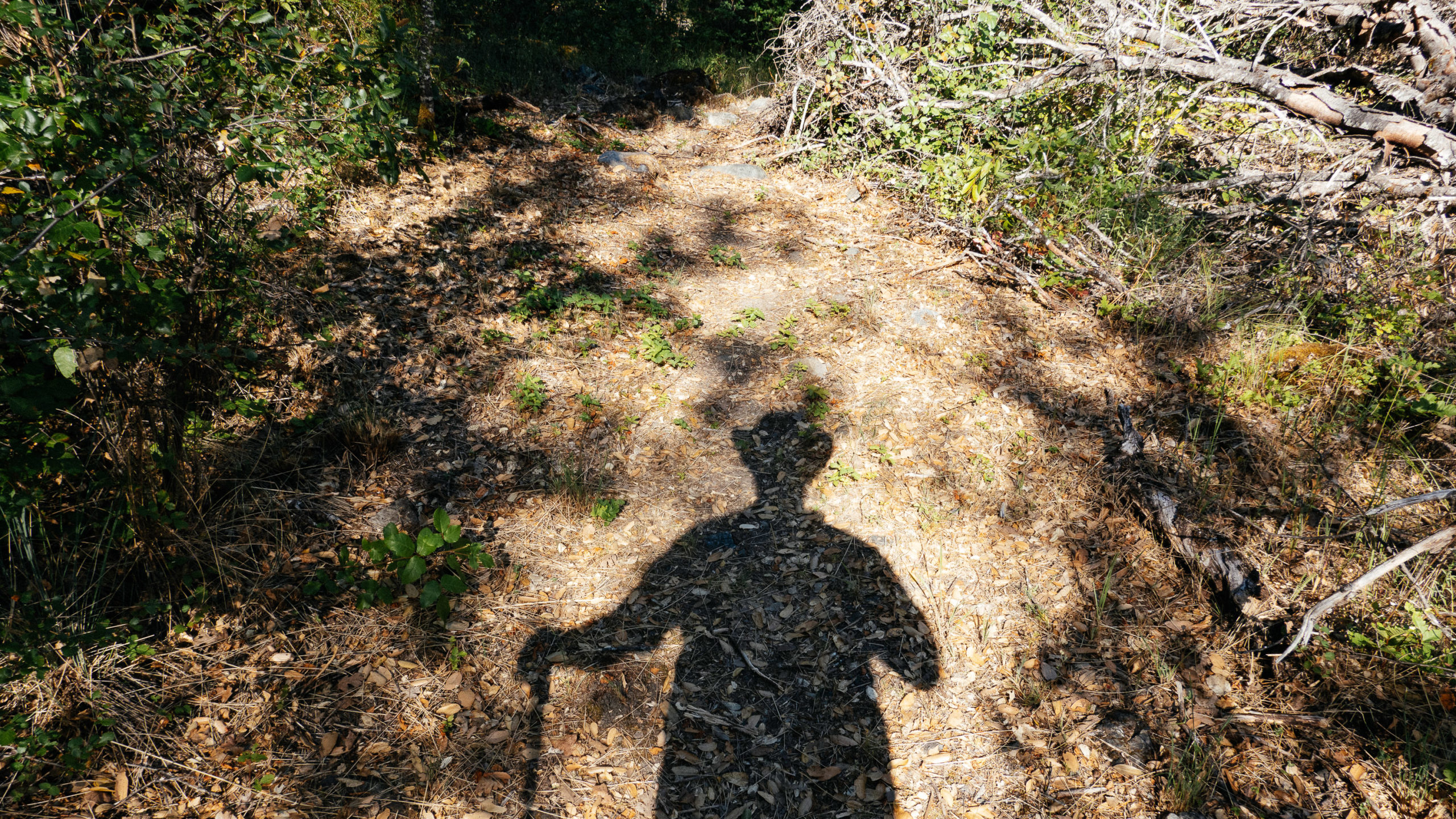 Shadow of a man in a wide brimmed hat with hiking pole on a dirt path