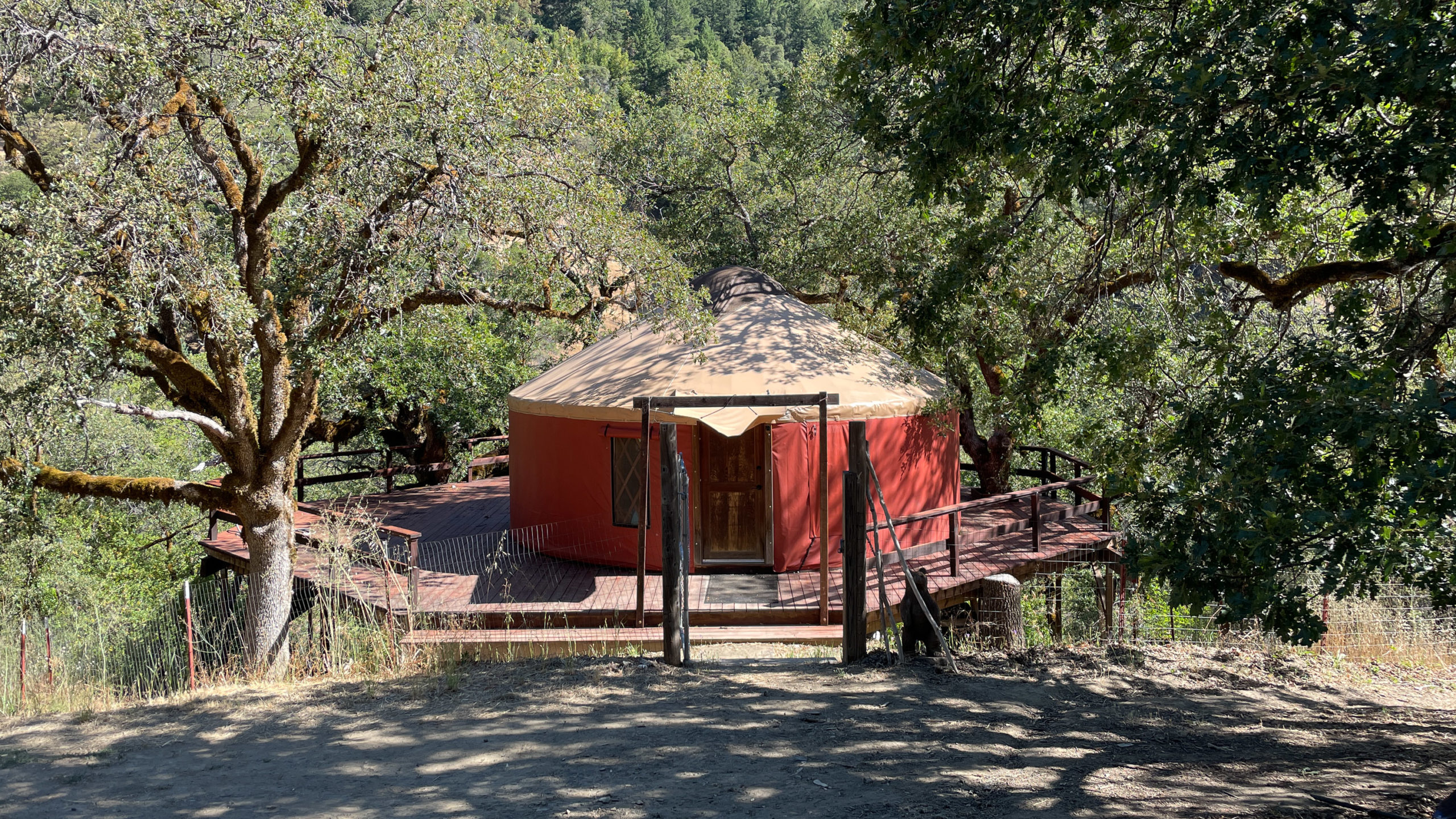 A yurt on a deck in a wooded landscape