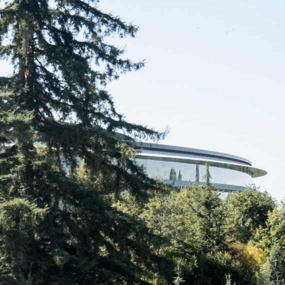 A large circular office building is partially seen through trees