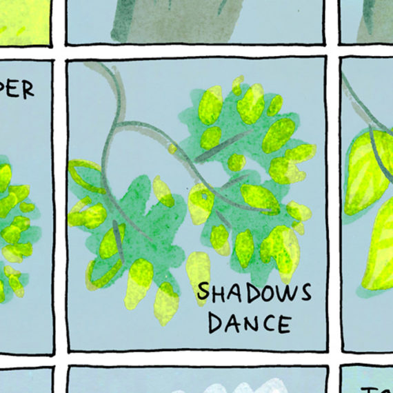 """An illustration of a tree with the words """"Shadows Dance"""" written"""