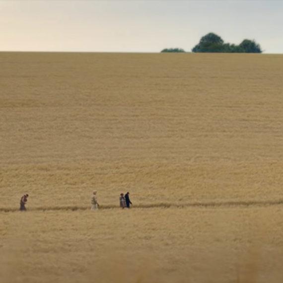 Four folks walk in fields of wheat